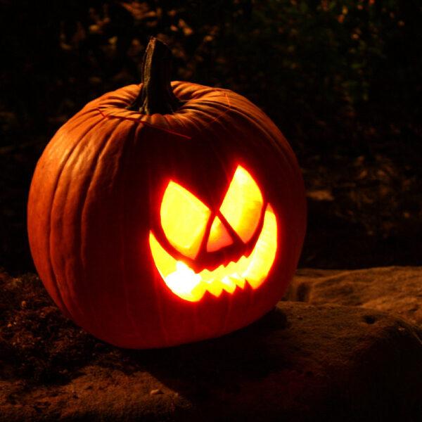 Хэллоуин в Аптекарском огороде