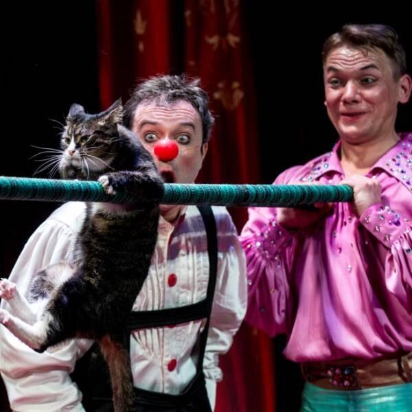 Спектакль «Я - клоун, или КОТОстройка»