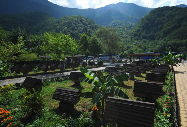 Местные жители - об отдыхе в Абхазии: У нас не так шикарно, как в Европе, зато от красоты скулы сводит!